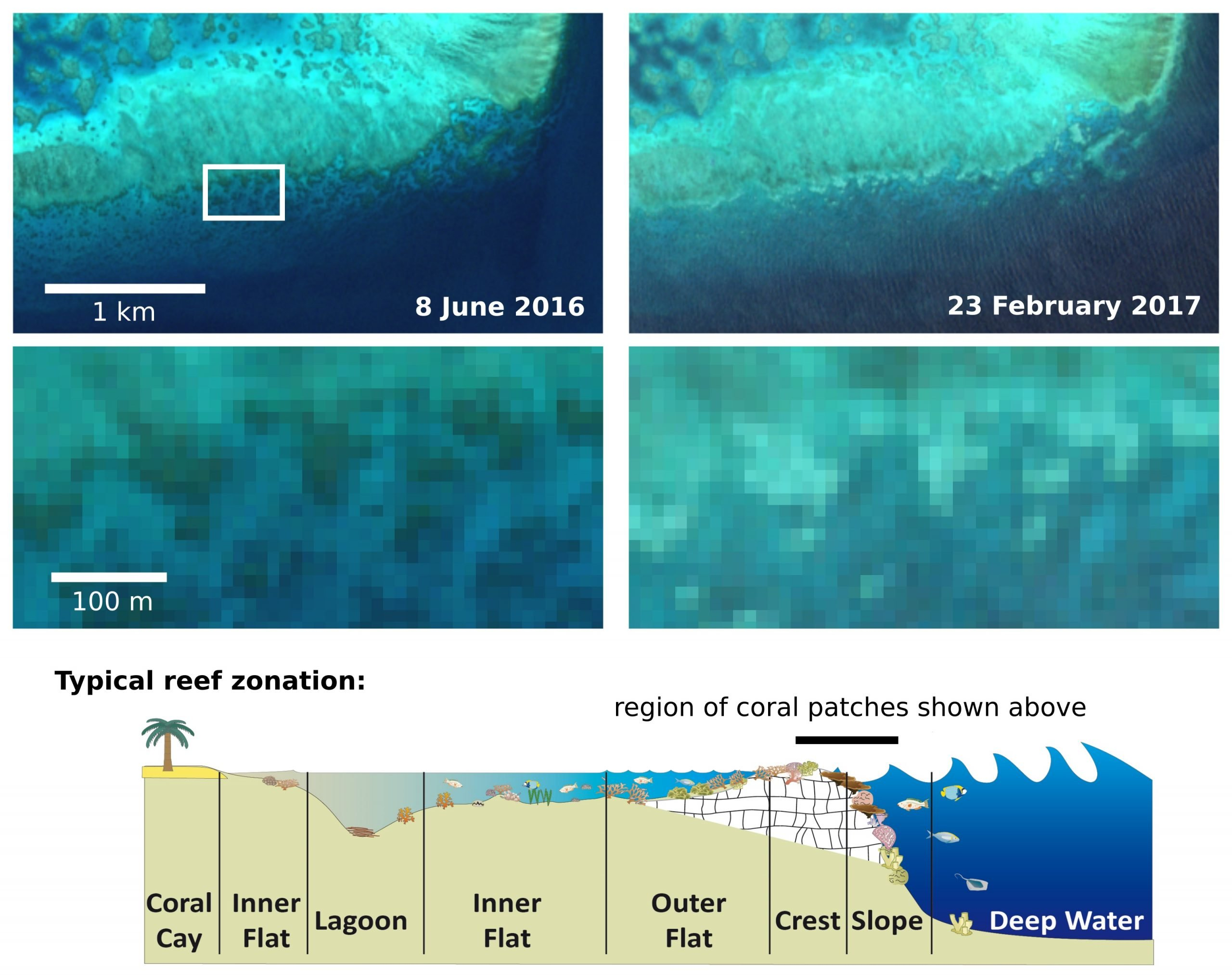 Satelite Images showing Coral Bleaching 2016 and 2017