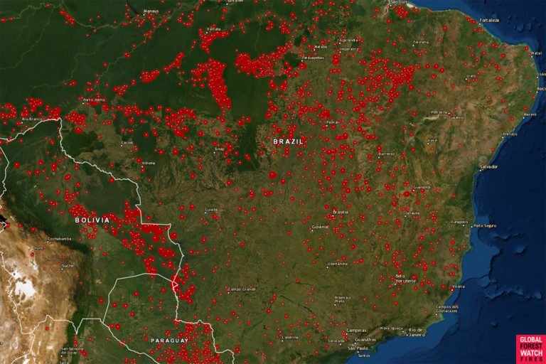 Satellite Images of Amazon Fires